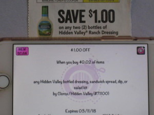 hidden valley coupon error